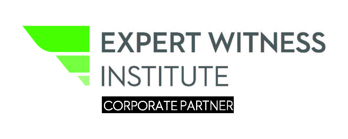 Expert Witness Winner logo